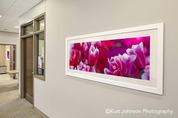 Lauritzen Outpatient Center Health Care Clinic Install framed flower healthcare design art installation