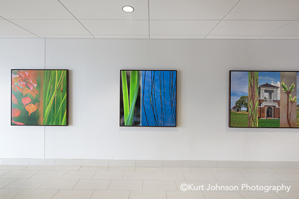Brooking SD install gallery wrapped framed canvas grasses leaves color slice wall art installation