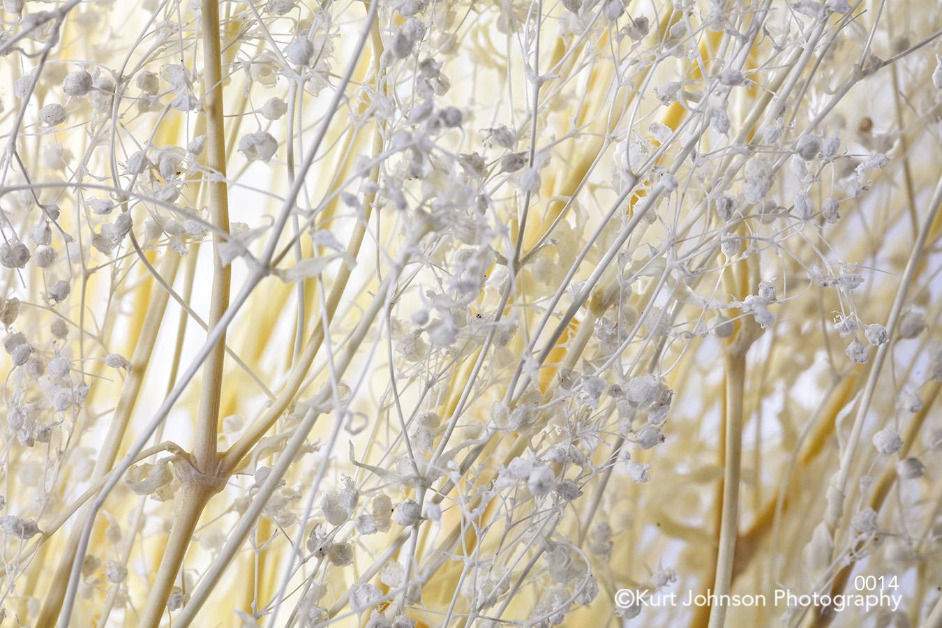studio pattern white beige gray tan baby's breath soft texture lines