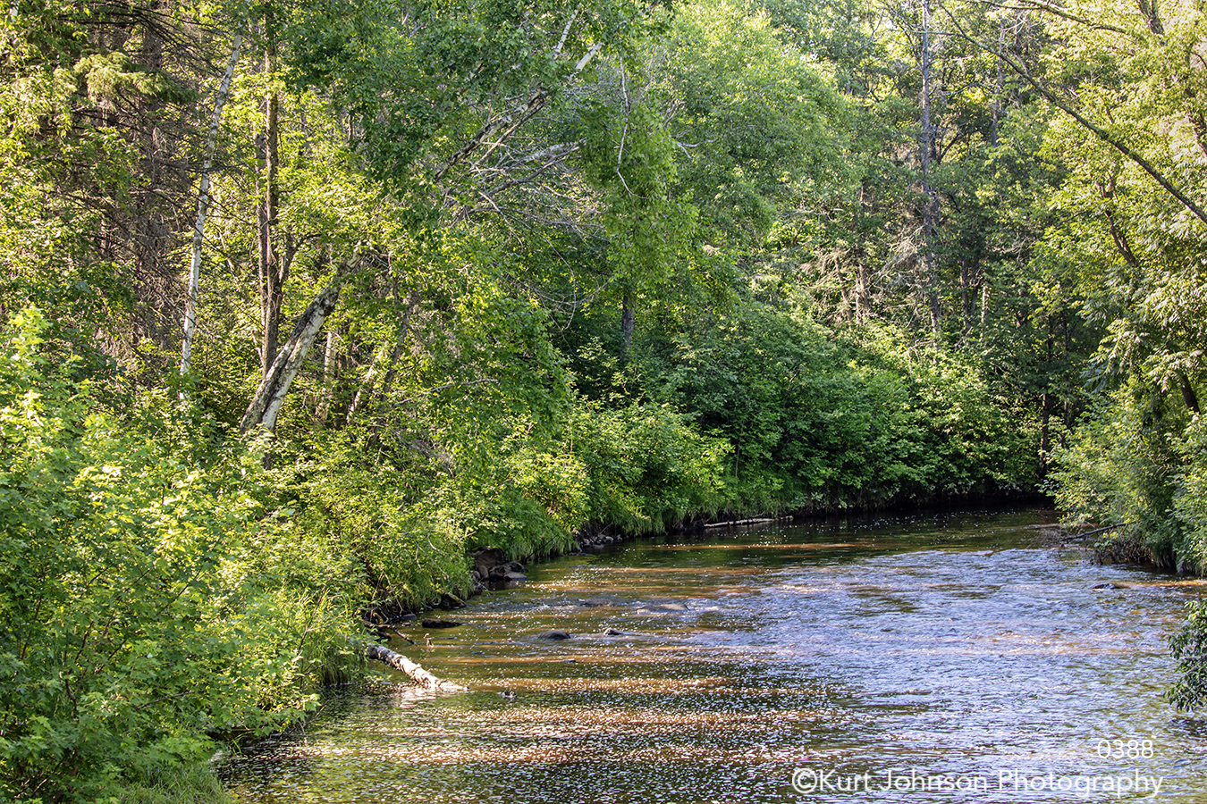 trees river path stream water blue green waves waterscape