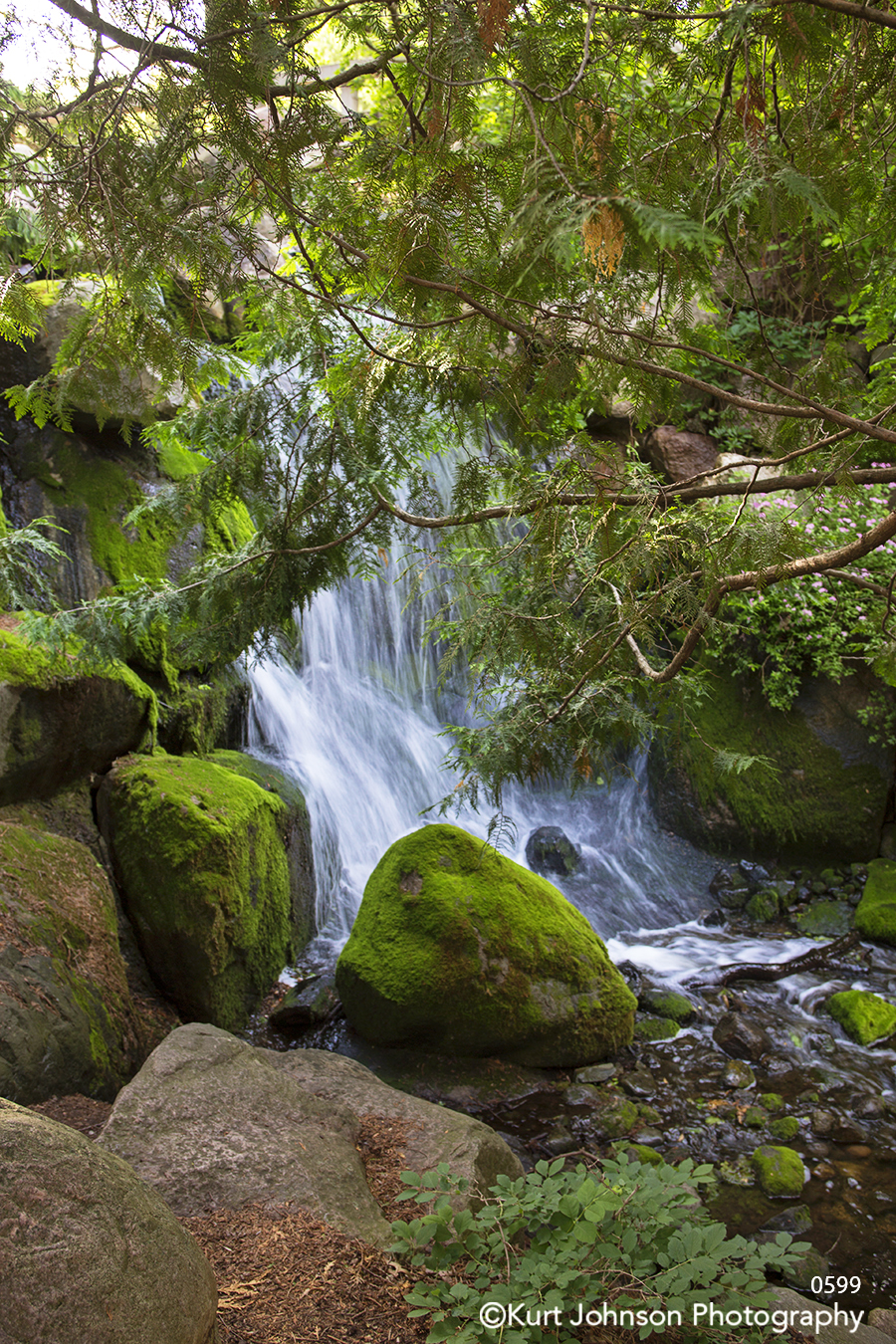 running water waterfall river green moss rock trees branches waterscape stream waves
