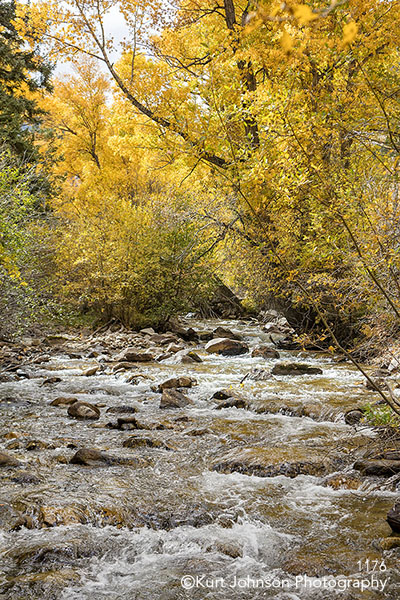 yellow trees autumn waterscape waterscapes water rocks river
