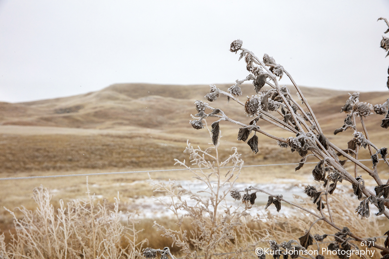Badlands South Dakota Dakotas mountains landscape brown tan beige snow winter grass grasses
