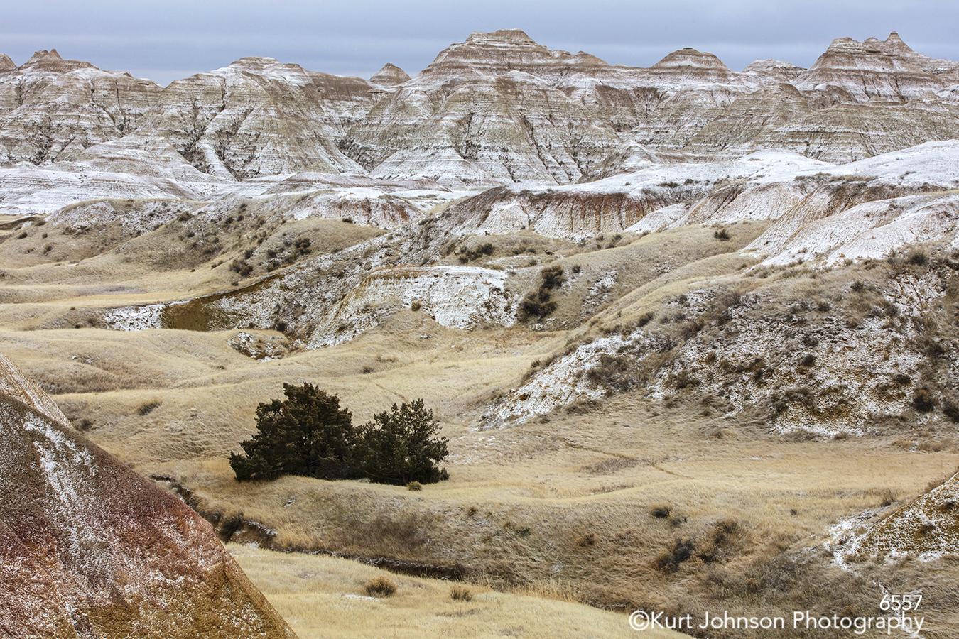 Badlands South Dakota Dakotas mountains trees landscape brown tan beige snow winter