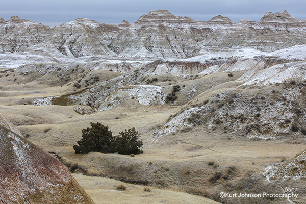 Badlands South Dakota Dakotas mountains trees landscape brown tan beige snow winter