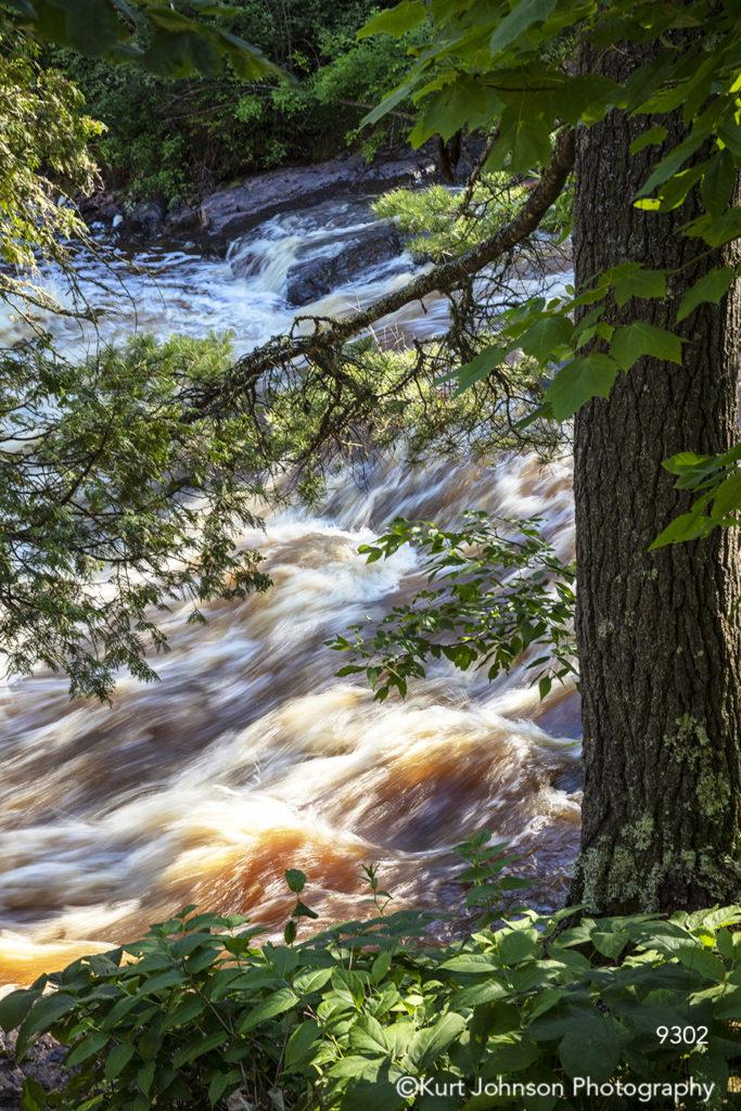 running water stream waves waterfall green tree brown waterscape leaves