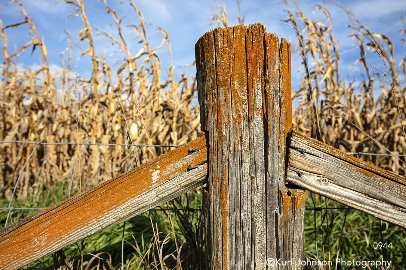 midwest wood tree fence rust corn orange farm field