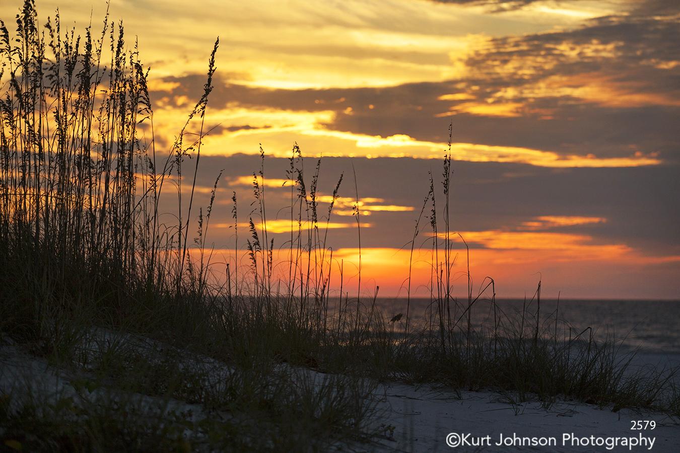 orange sunset tall grass waterscape southeast clouds water beach shore