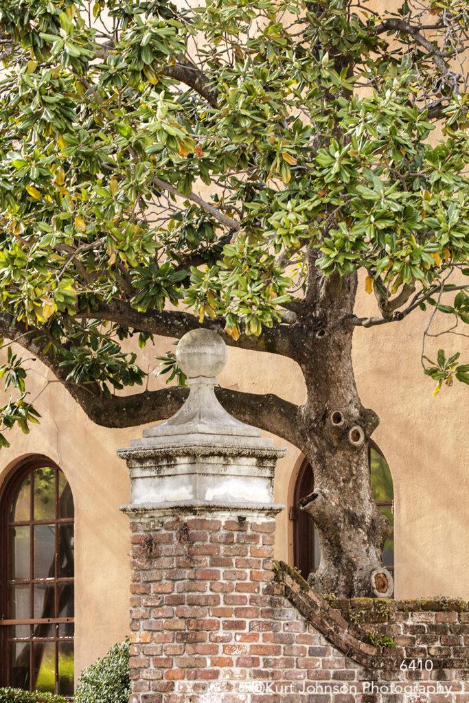 southeast Charleston South Carolina green tree red brick architecture window city