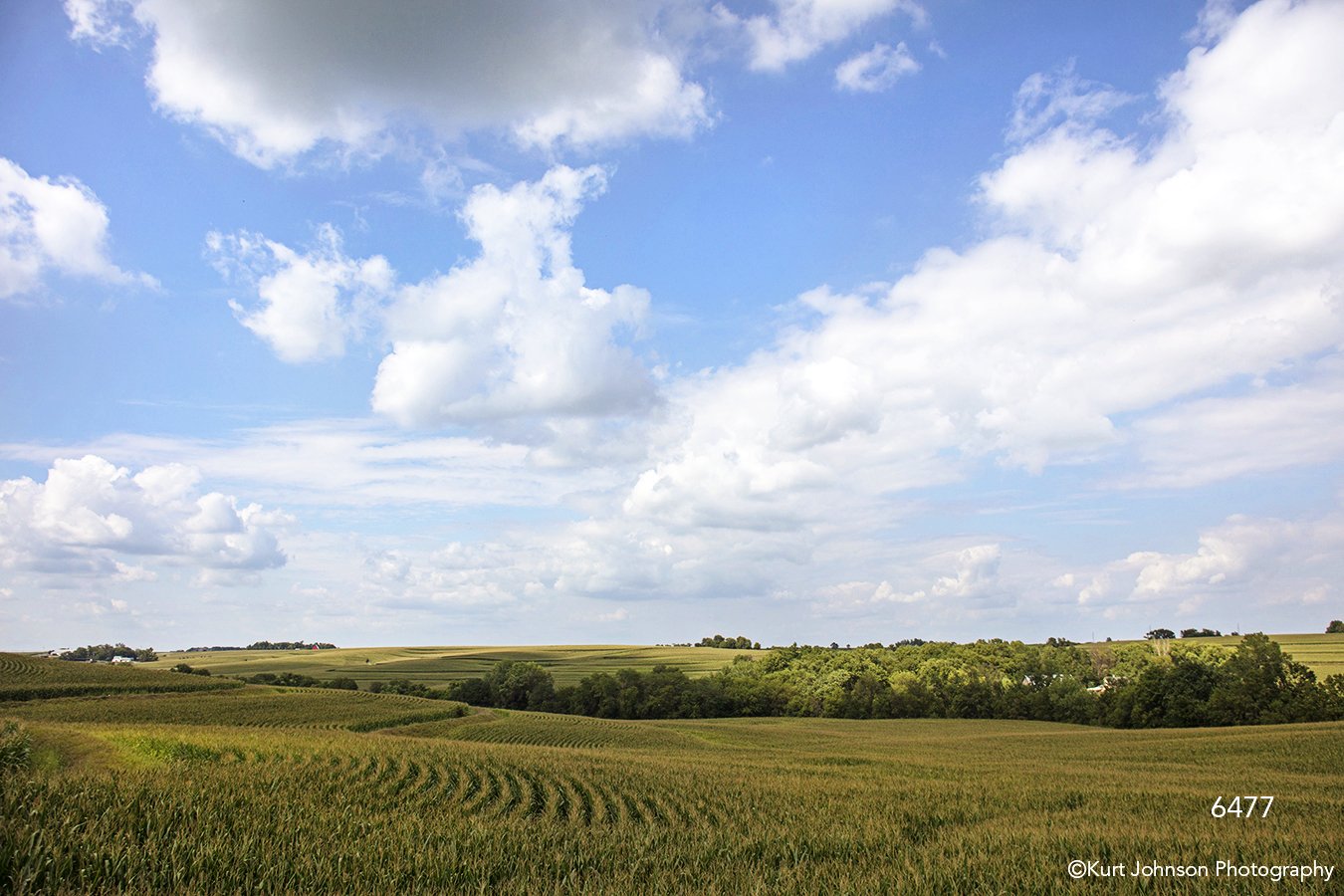 midwest blue sky clouds rolling hills landscape farm green trees