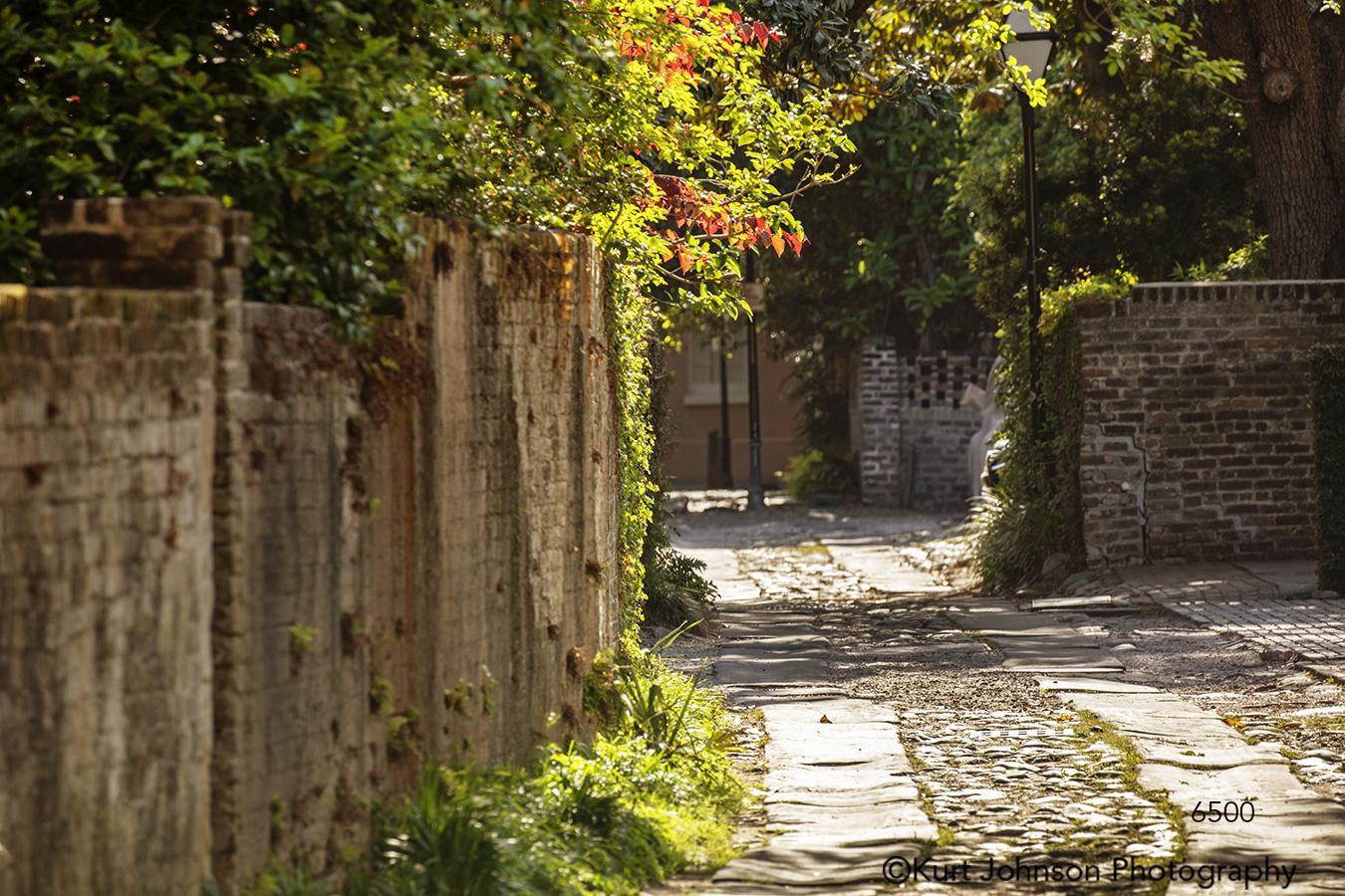 southeast Charleston South Carolina green trees brick path shadows road
