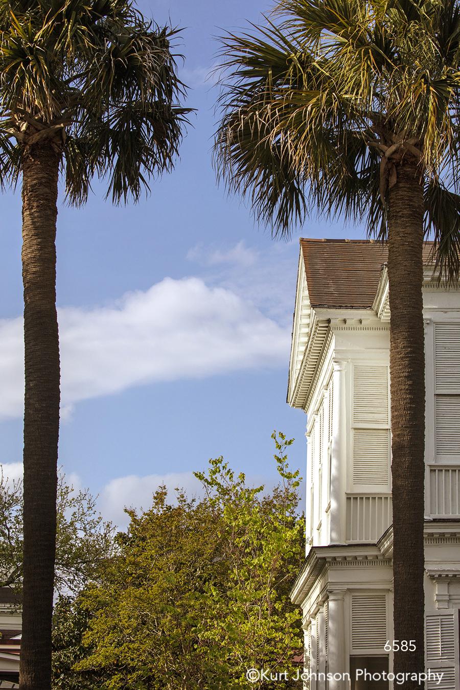 southeast Charleston South Carolina green palm trees blue sky architecture building city