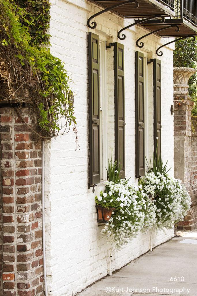 southeast Charleston South Carolina green white flowers red brick window shutters windowsill architecture building city