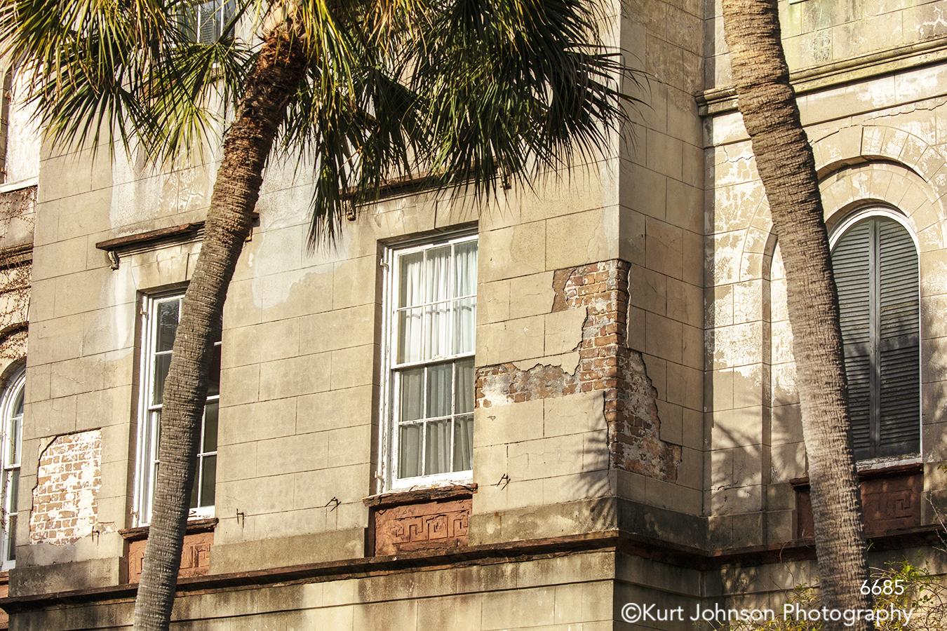 southeast Charleston South Carolina green palm tree window building architecture city
