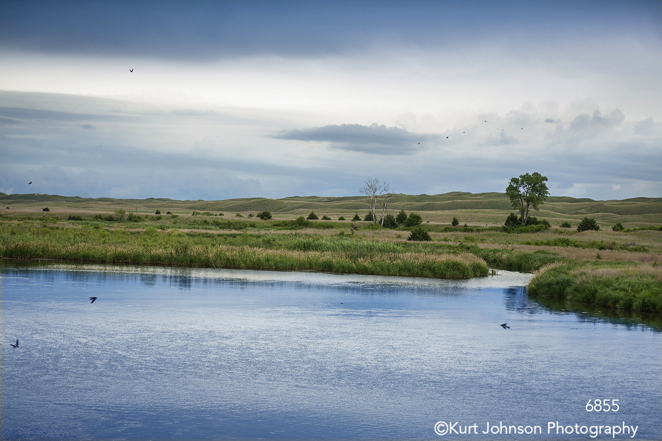 midwest waterscape blue sky trees grass country landscape