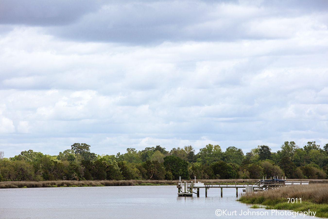 southeast Charleston South Carolina green trees blue sky clouds water waterscape waterscapes dock pier water