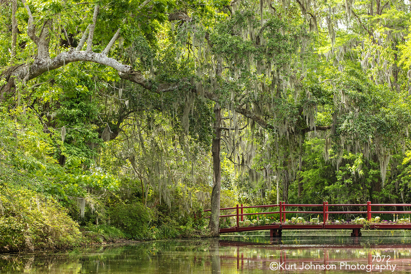 southeast Charleston South Carolina green tree trees red bridge water waterscape waterscapes