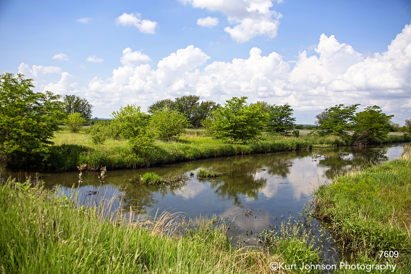 midwest waterscape water stream green grass trees blue sky clouds
