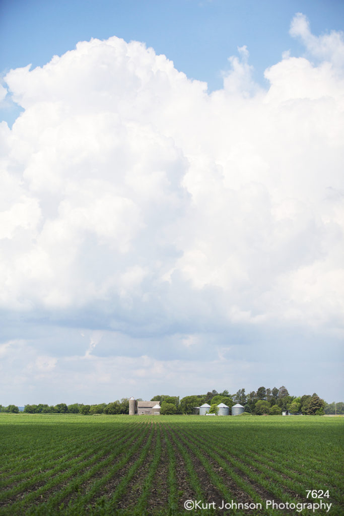 midwest green grass field farm barn country blue sky clouds
