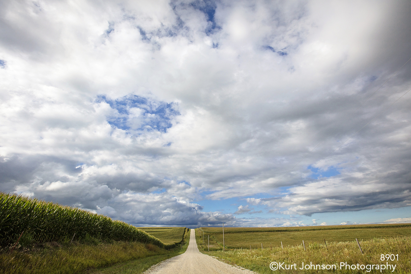 midwest road path country blue sky clouds green grass landscape