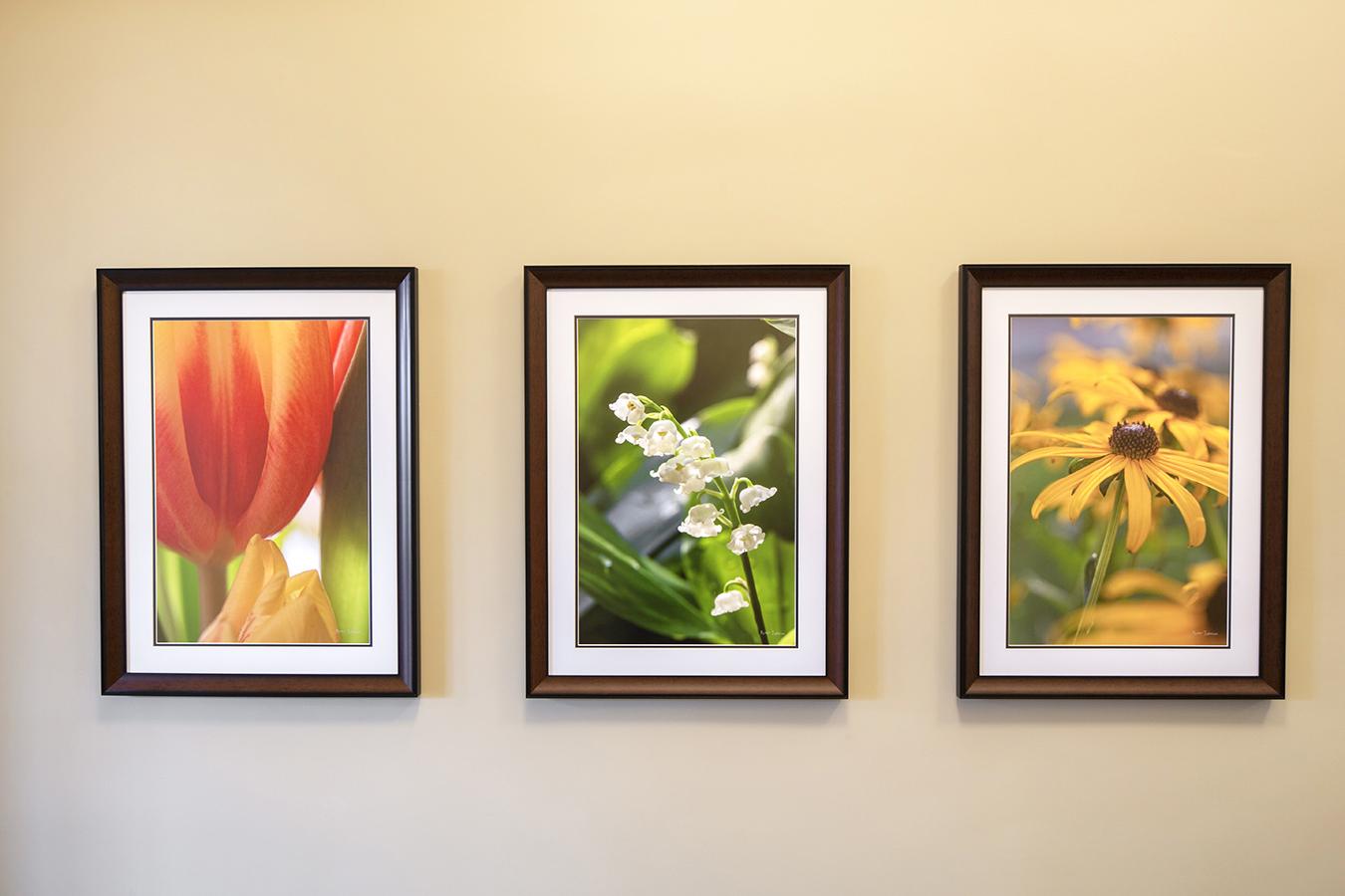 Pender hospital healthcare installation wood framed art flower botanical photography