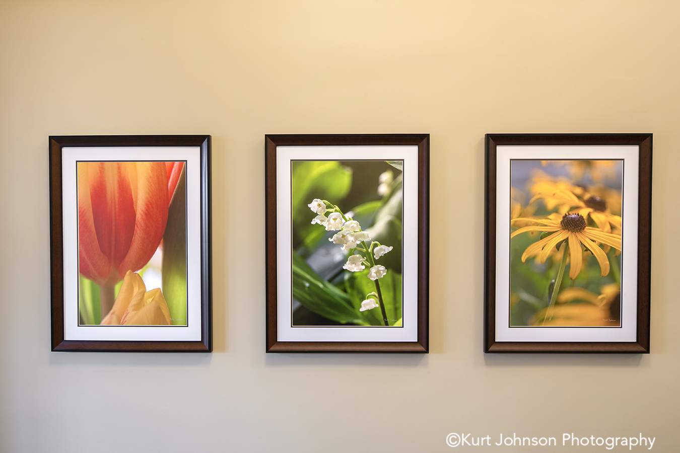 Pender hospital healthcare installation wood framed art flower botanical photography