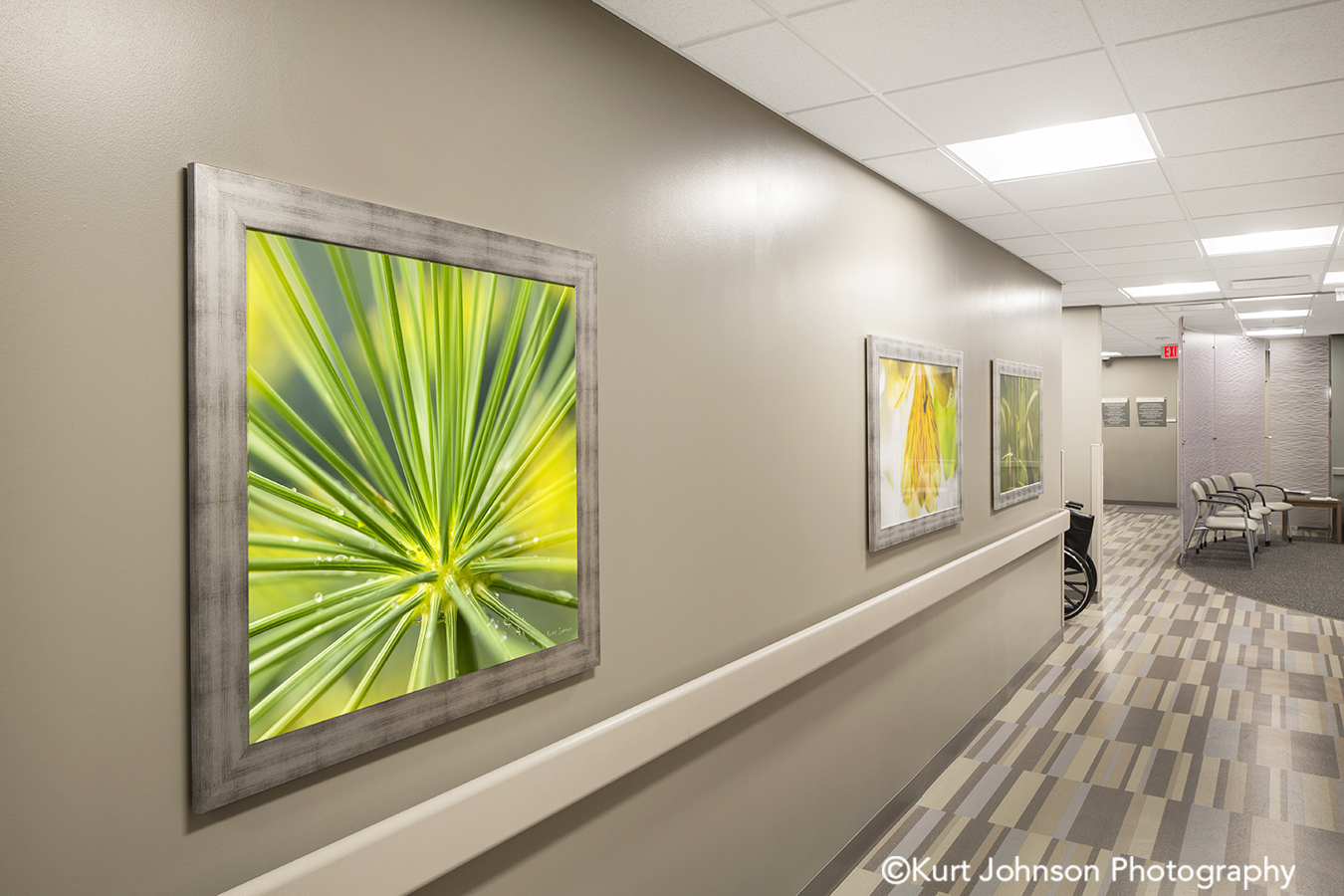 silver frame framed botanical green flower art installation Wayne Nebraska midwest install