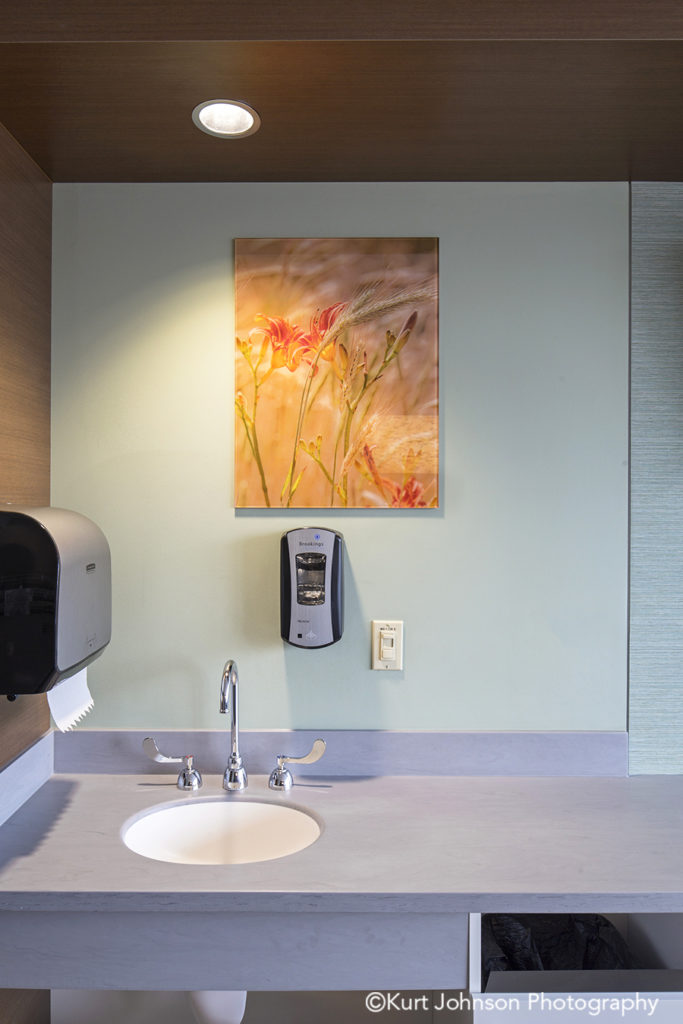 Brooking SD install healthcare installation orange botanical flowers