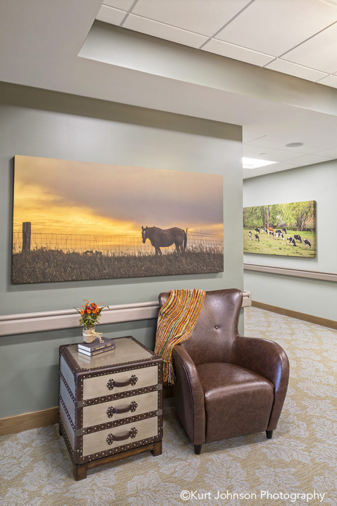 Broken Bow senior living installation gallery wrapped canvas install horse wildlife