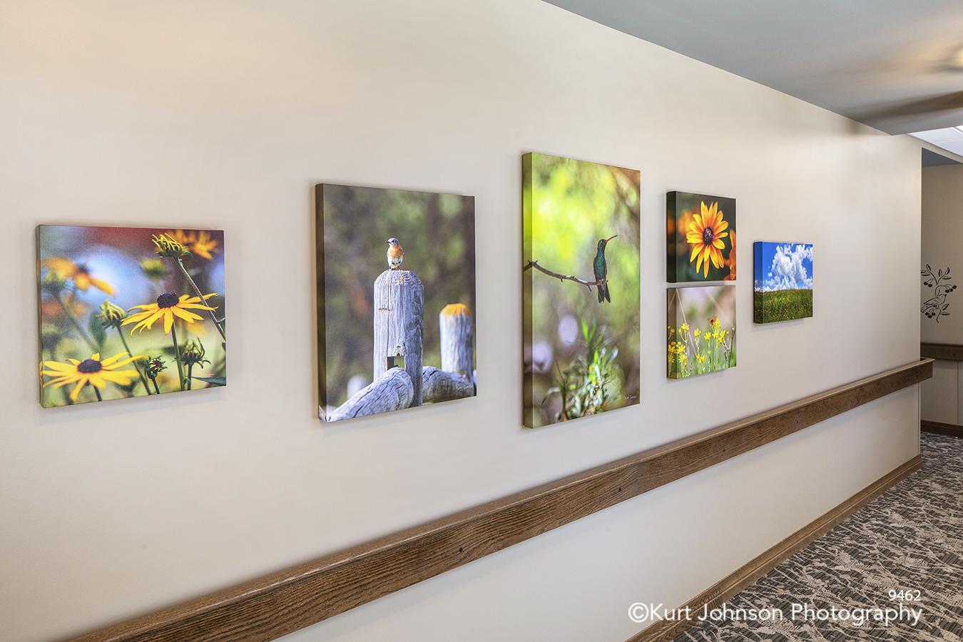Brookstone Gardens assisted senior living facility Kearney NE landscape nature gallery wrapped canvas prints