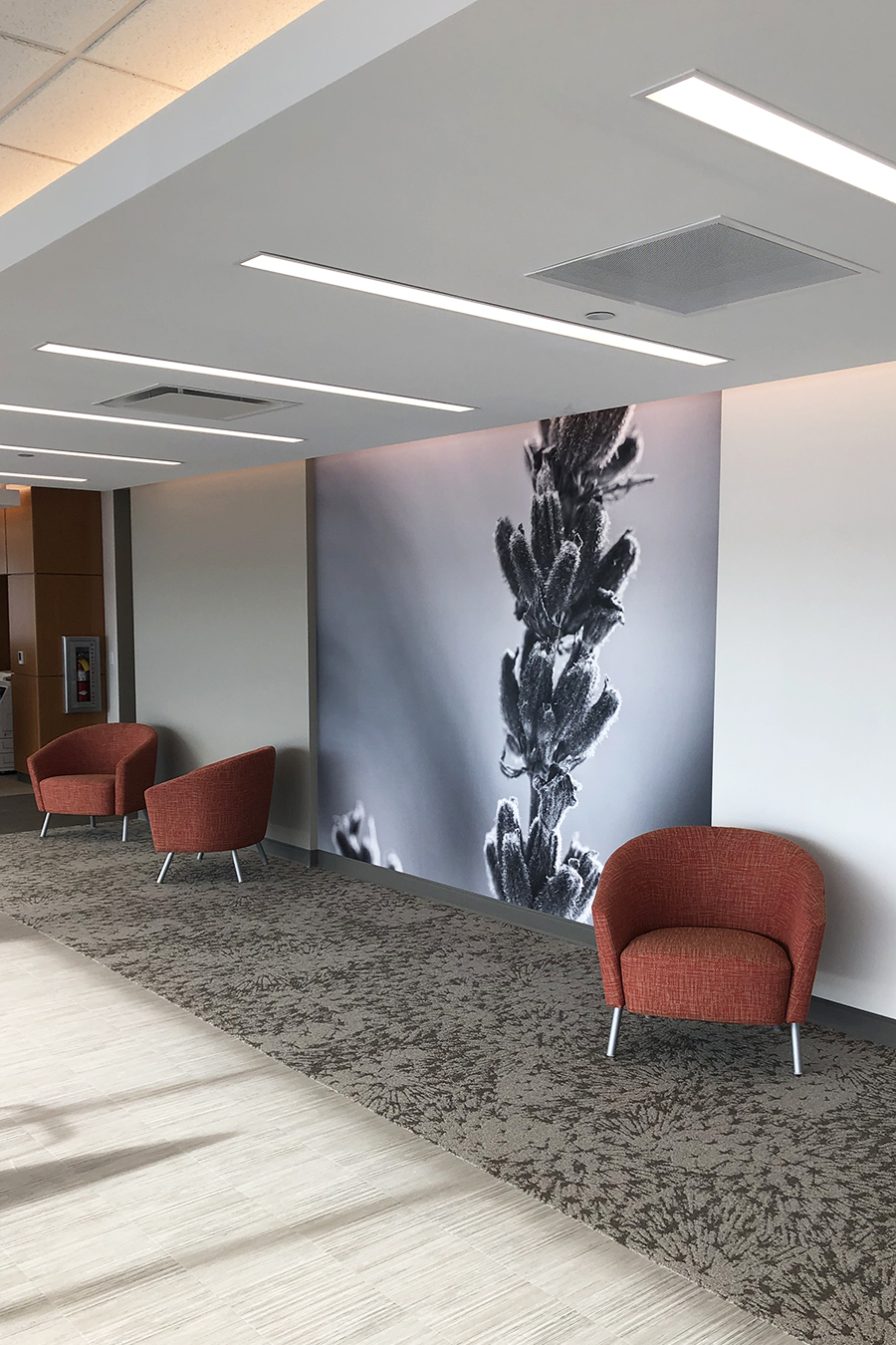 Faith Regional Health Norfolk NE install installation koroseal Type II vinyl wallcovering black and white flower botanical