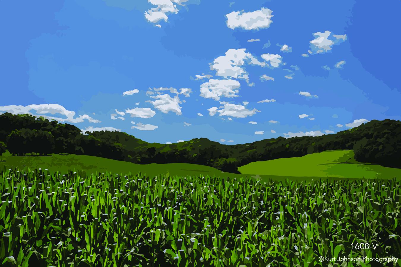 landscape corn field midwest blue sky clouds vector green grass
