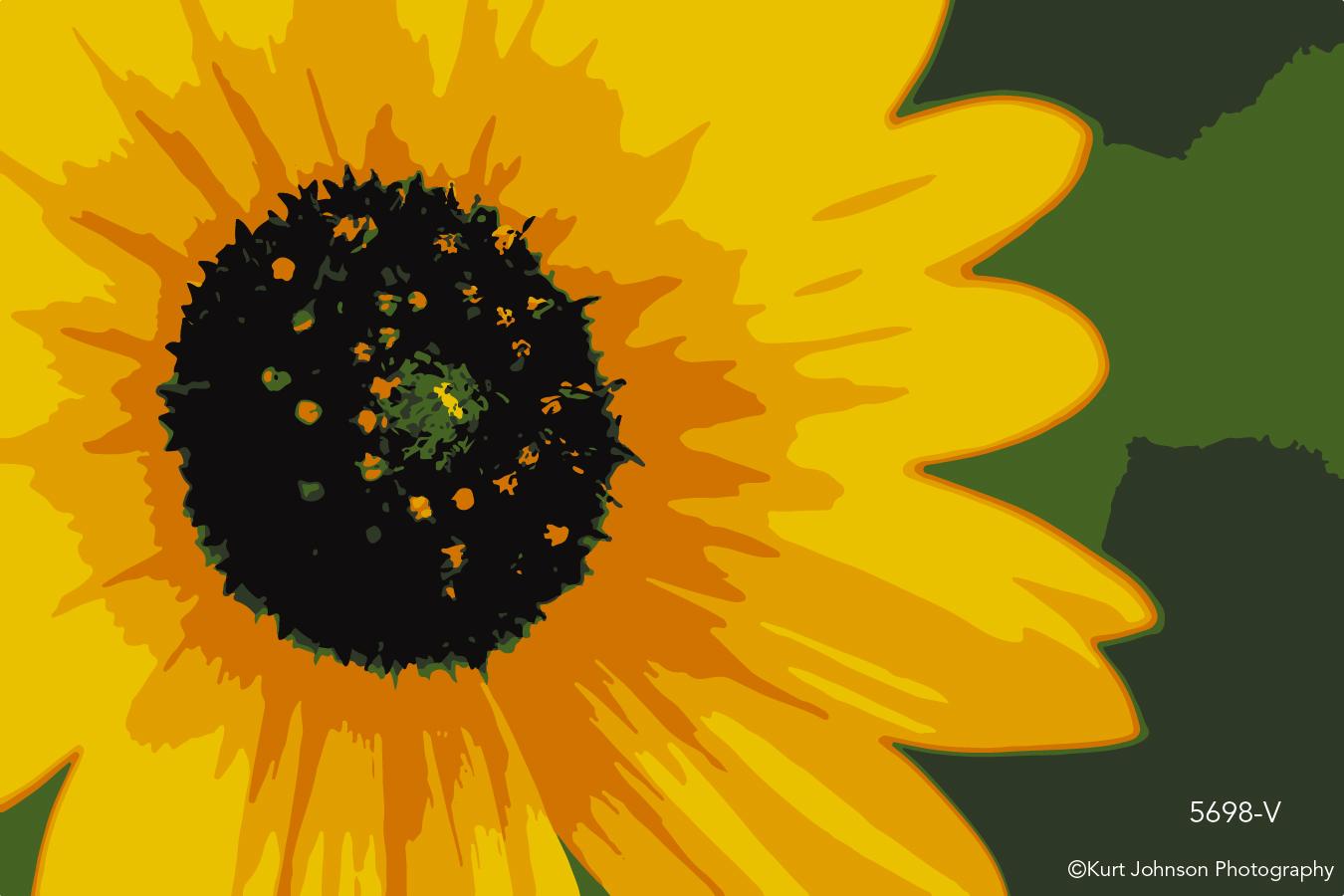 bright yellow flower botanical detail close up macro vector