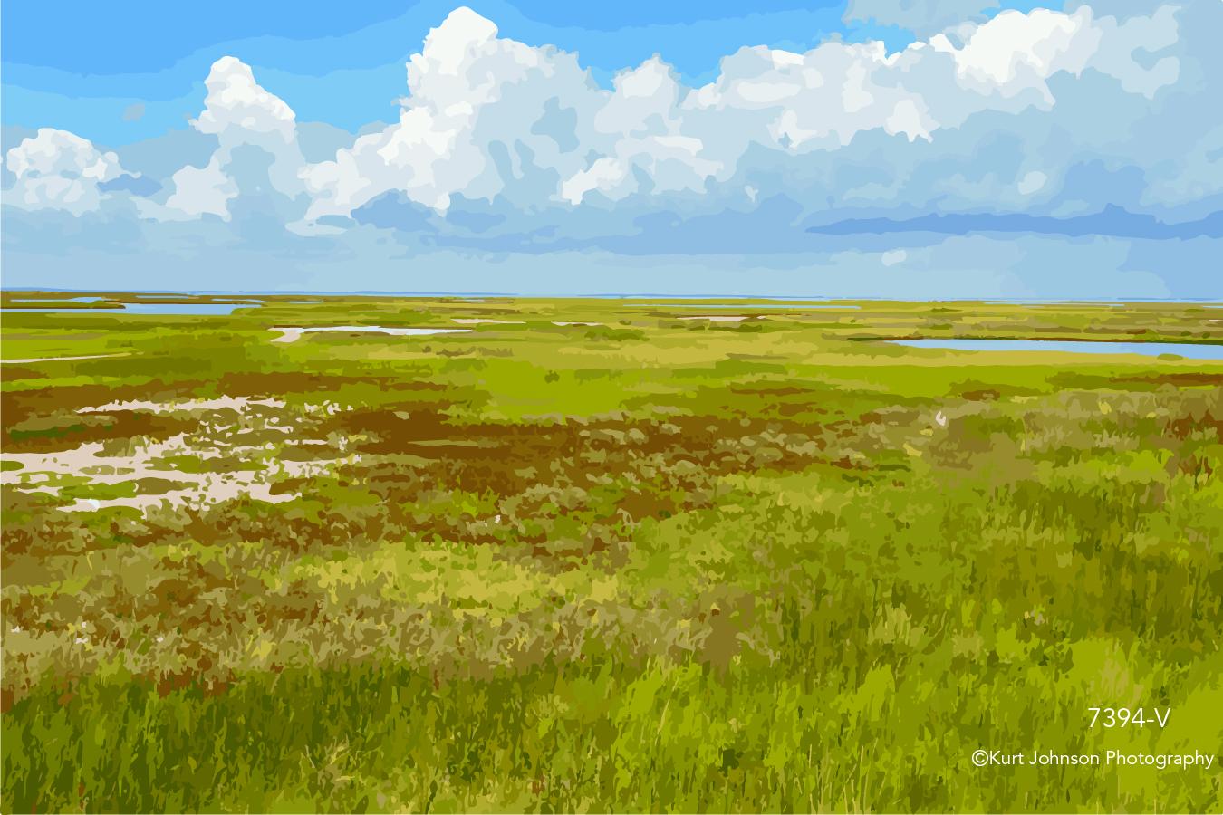 open field savanna green grass blue sky clouds landscape grasses
