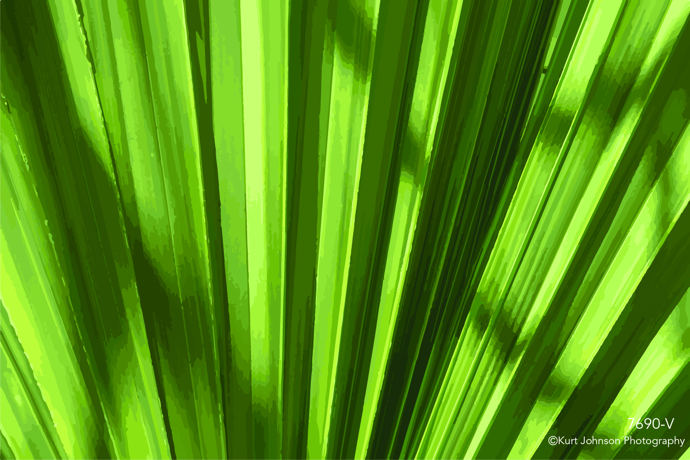 green leaves grass grasses texture pattern lines vector shadow shadows