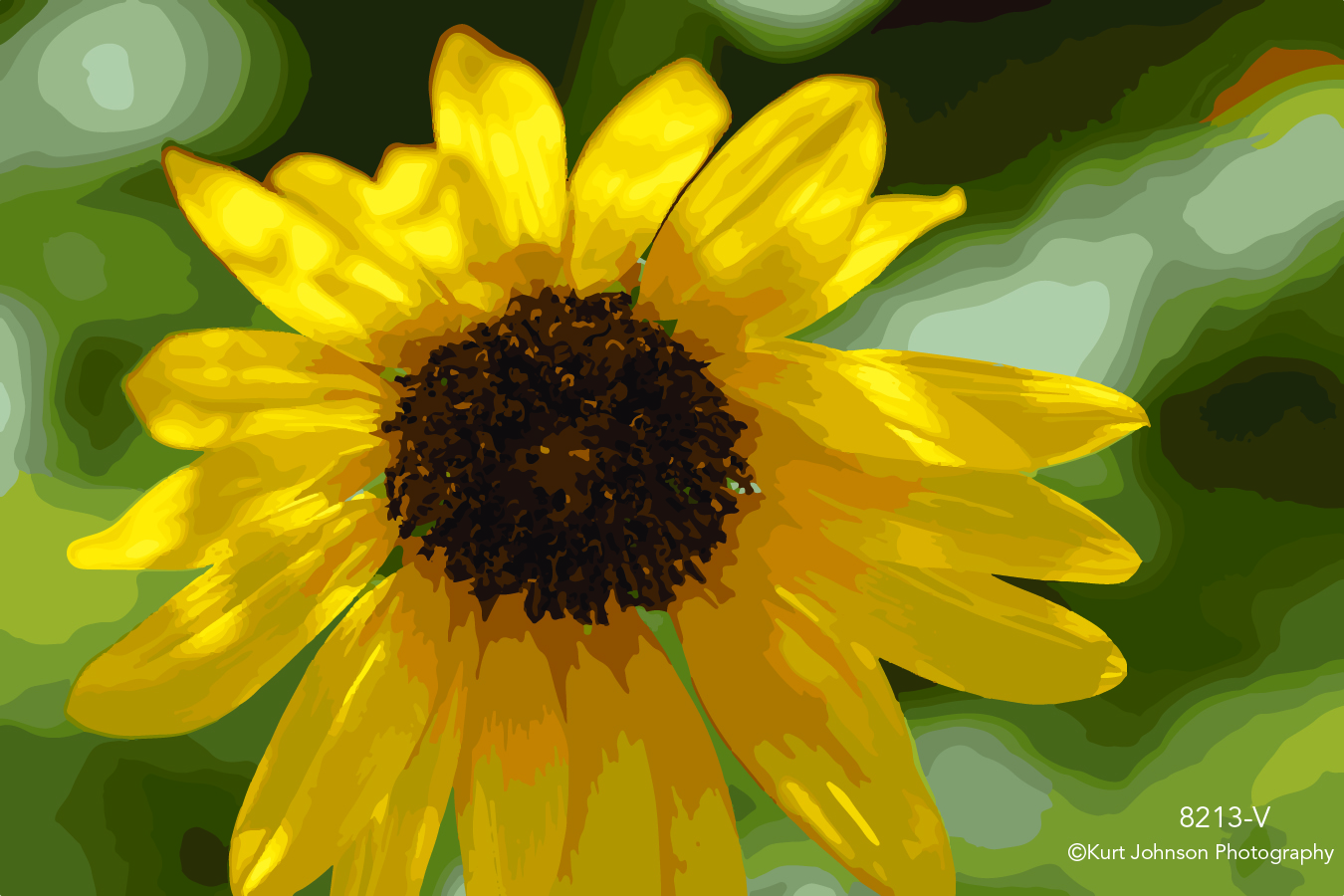 bright yellow flower botanical close up detail shadows vector