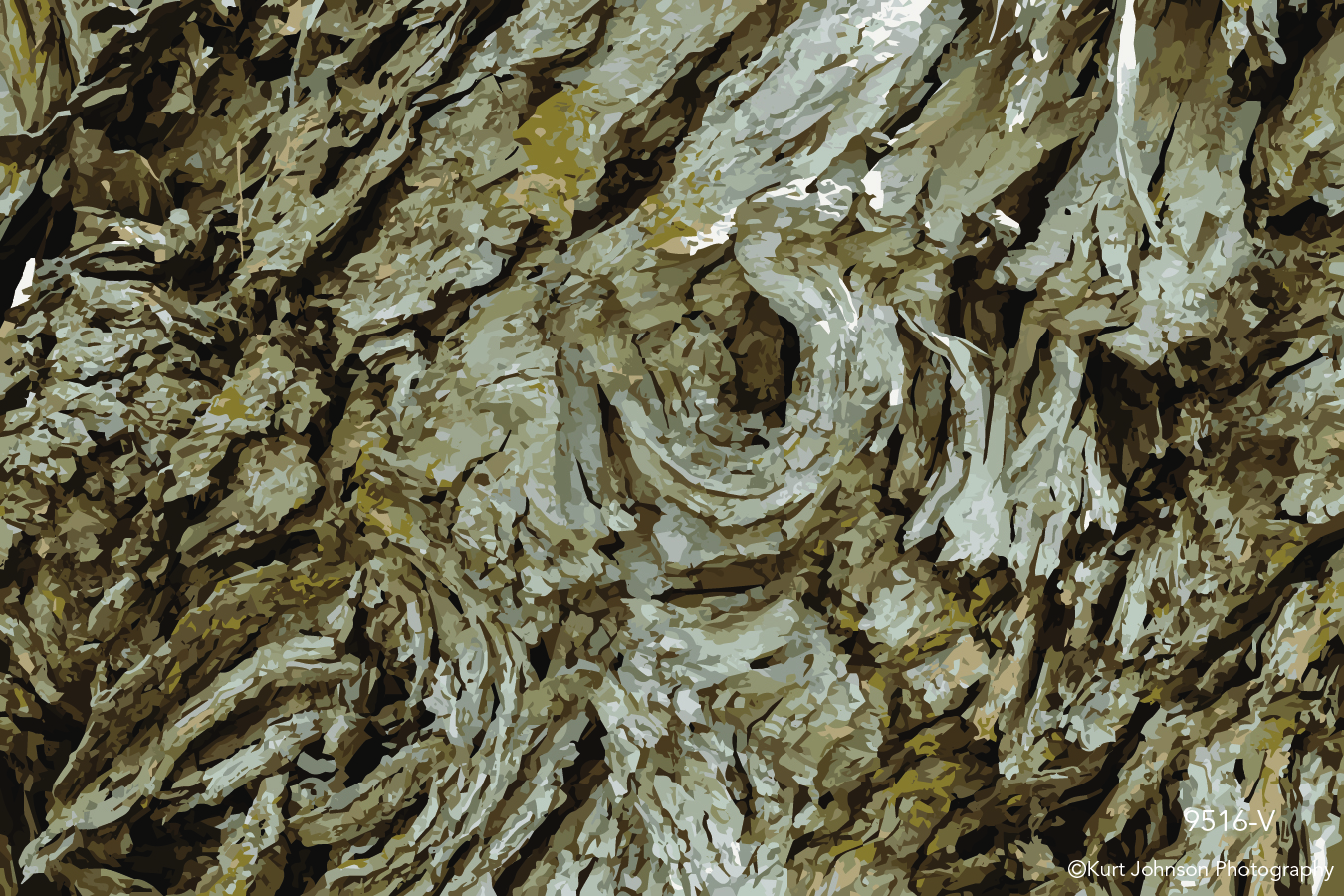 tree bark vector brown texture pattern