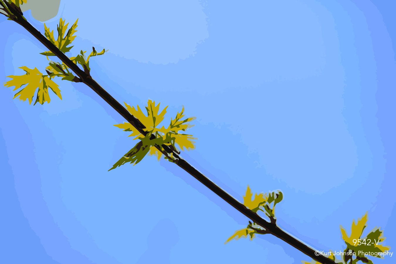 blue sky branch yellow leaves close up detail vector