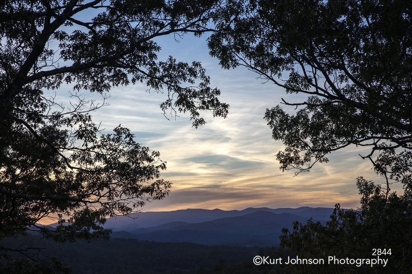 trees shadows silhouette blue sky sunset horizon landscape
