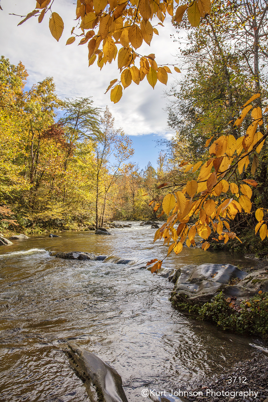 orange yellow fall autumn trees water stream river waterscape blue sky clouds