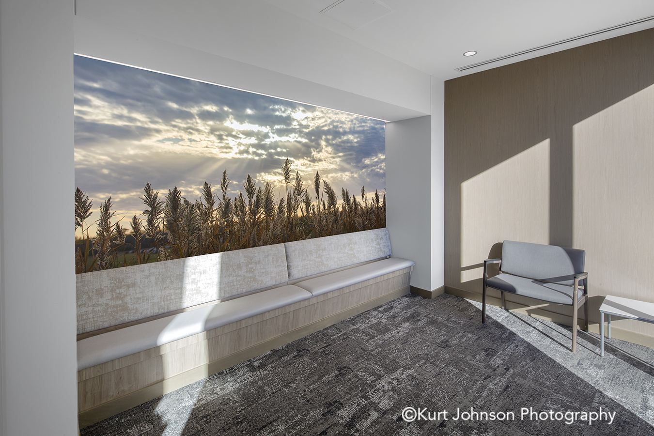 grass grasses landscape koroseal type II vinyl wallcovering install healthcare installation CHI St Saint Francis Grand Island Nebraska clinic cancer treatment meditation room