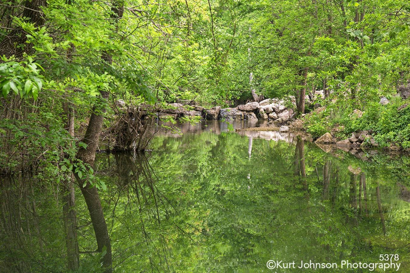 waterscape green trees tree branches rocks reflection landscape hospital art