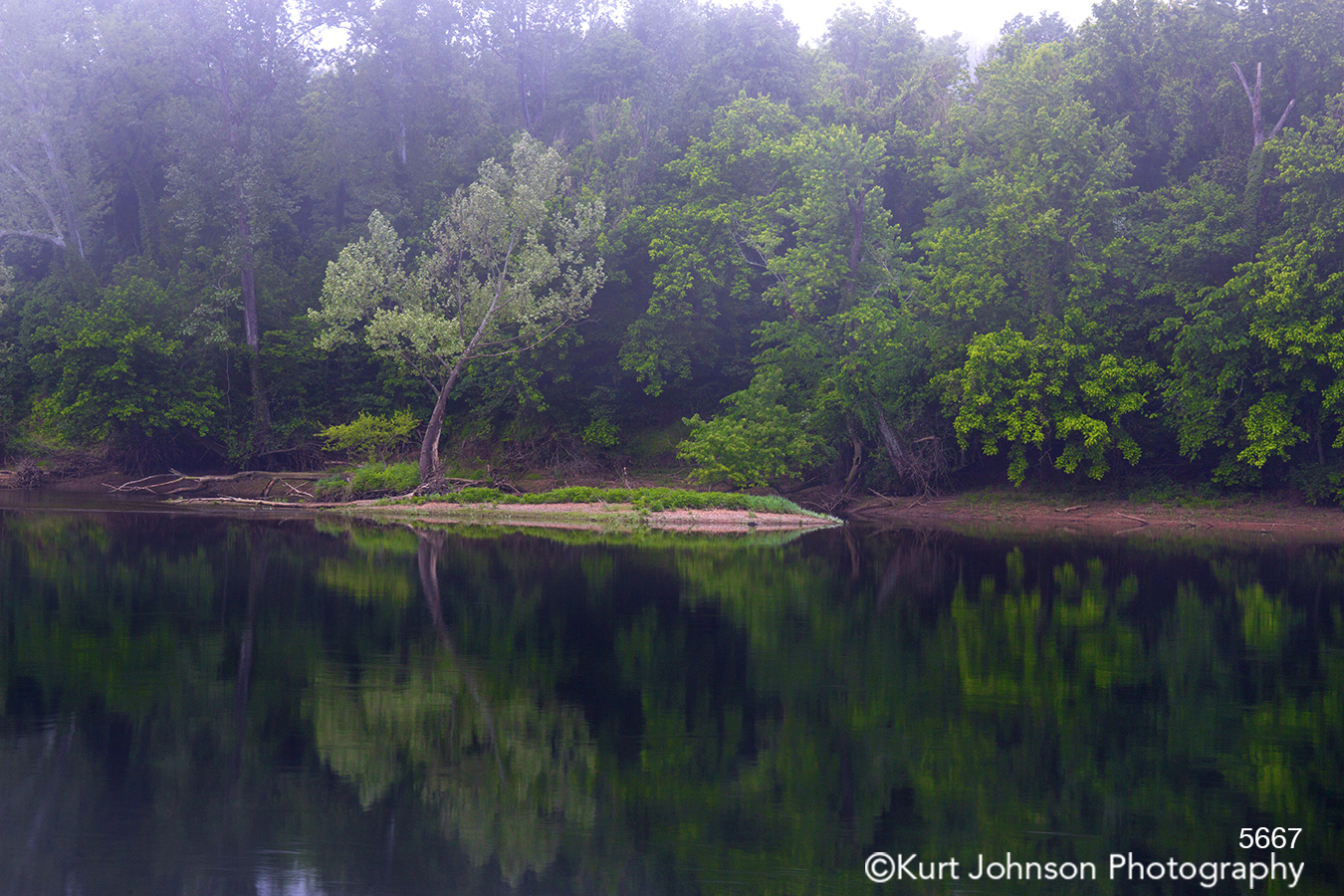 green trees fog waterscape water reflection mirror river stream shore coast