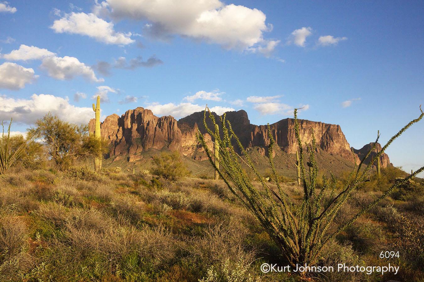 arizona mountain desert landscape southwest cacti cactus blue sky clouds mountains green trees indigenous