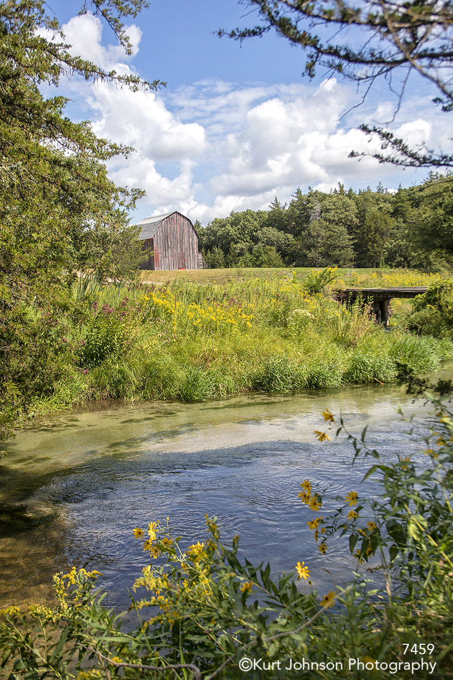 waterscape river water yellow flowers grass grasses barn midwest blue sky clouds landscape