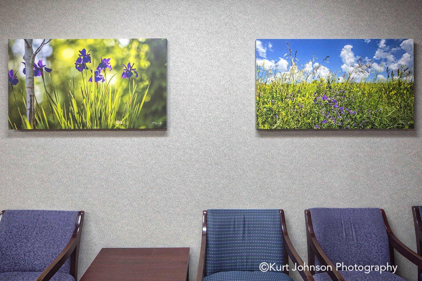 botanical flower landscape gallery wrap wrapped canvas art install Nemaha County Auburn Nebraska NE hospital art installation waiting lobby
