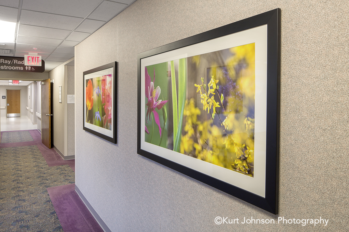 botanical flower framed art matte matted install Nemaha County Auburn Nebraska NE hospital art installation hallway corridor