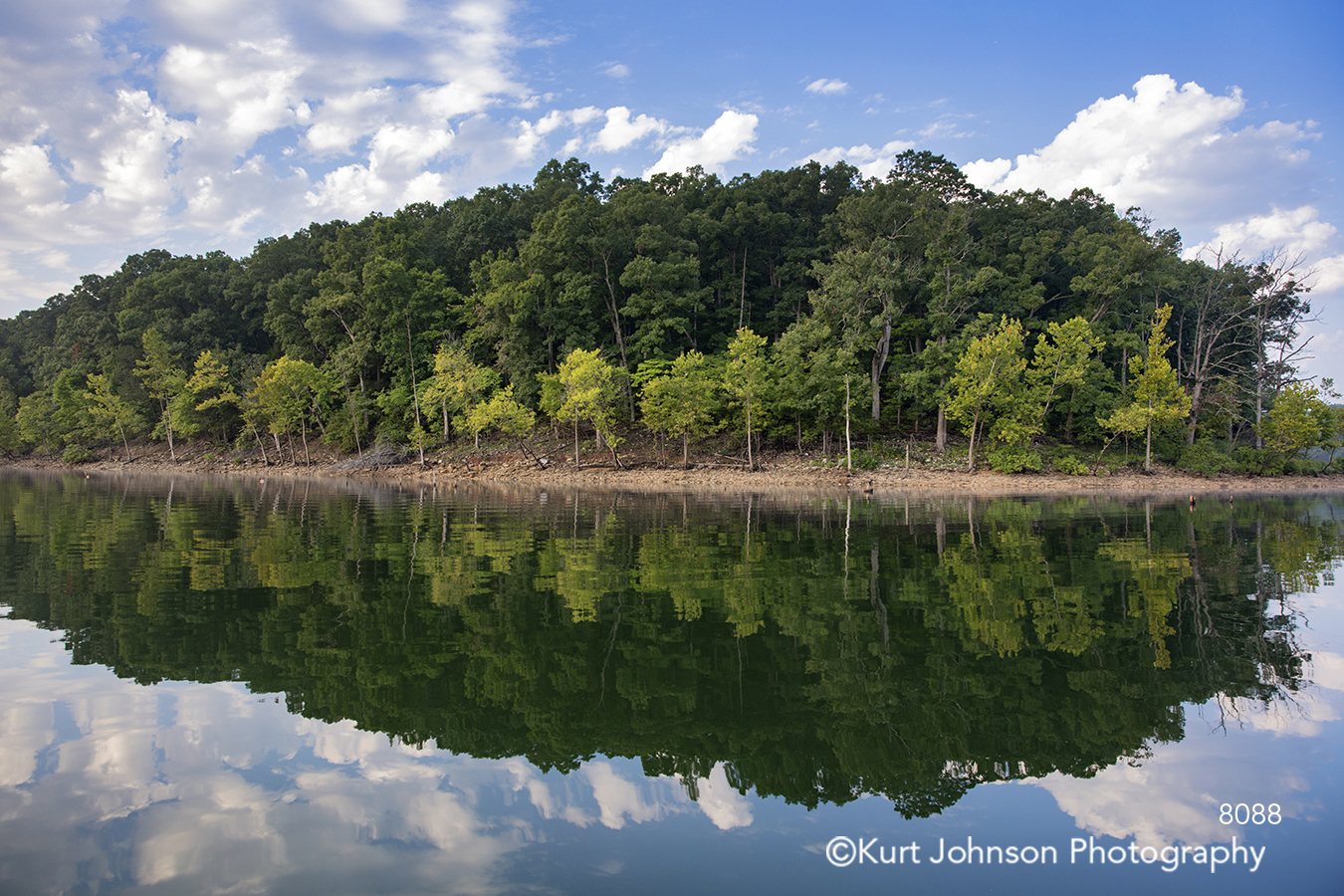 green trees forest waterscape mirror reflection shore coast blue sky clouds