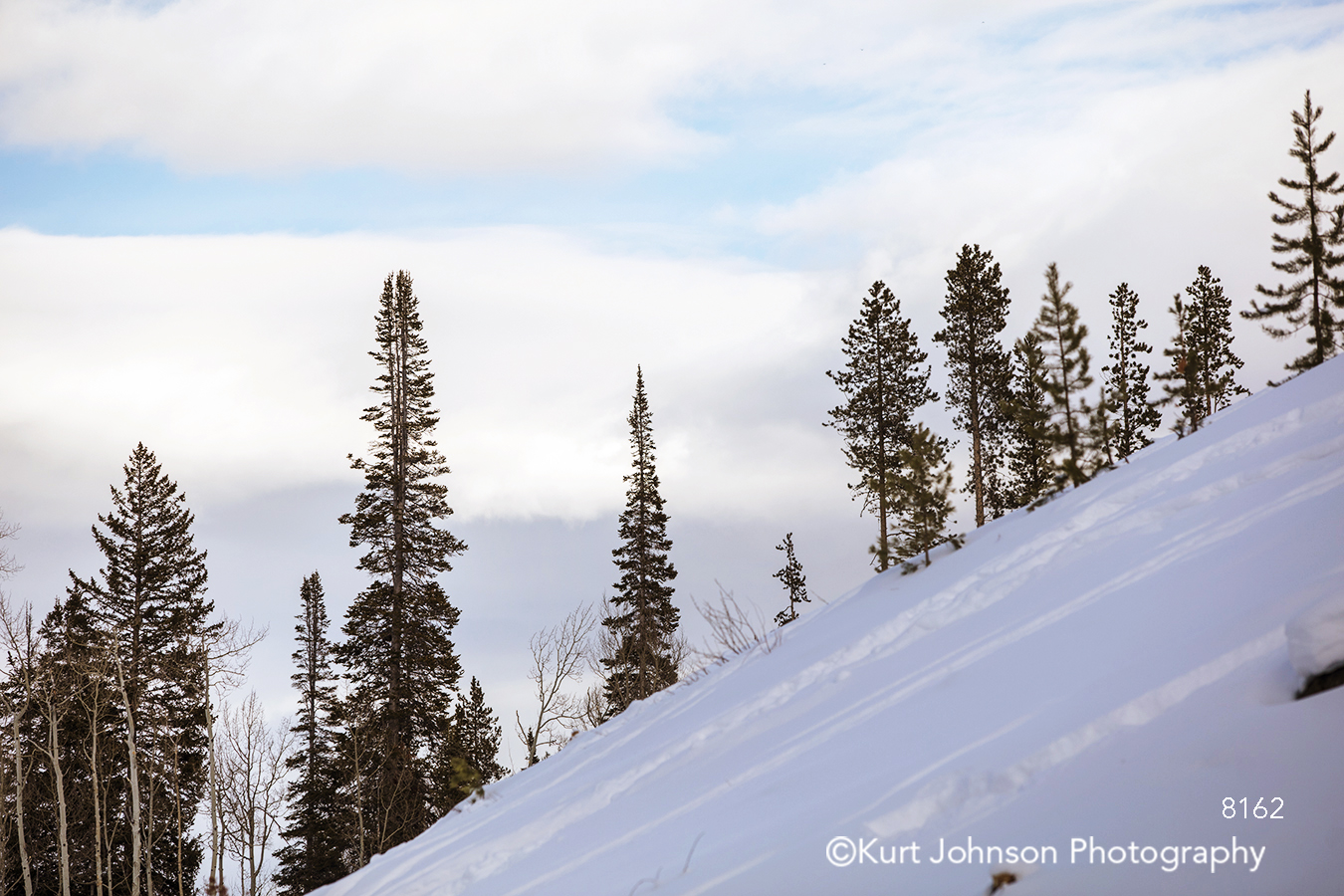 white snow snowy mountain top pine evergreen trees blue sky clouds winter