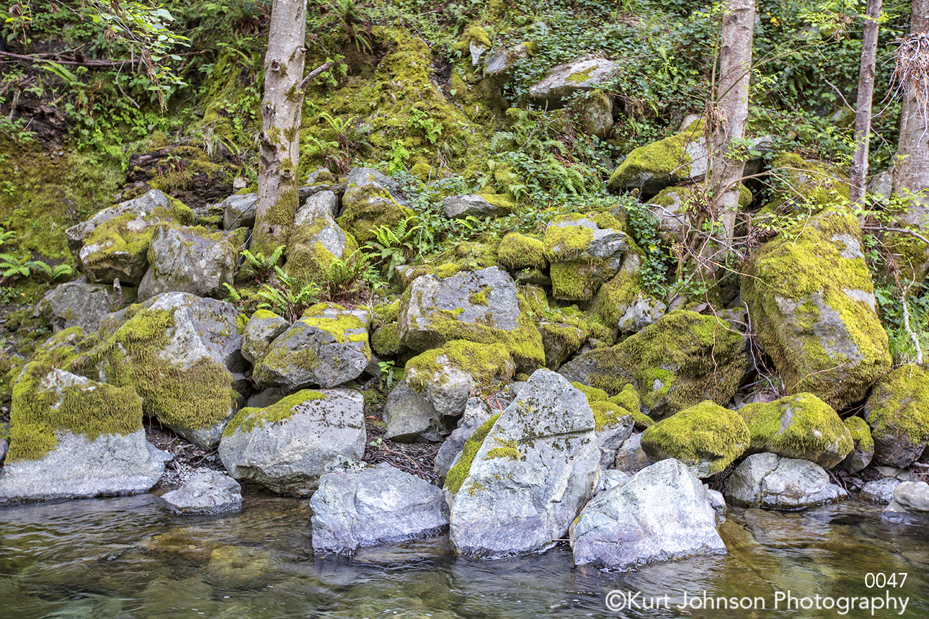 water waterscape green trees rocks stream lake river moss stone